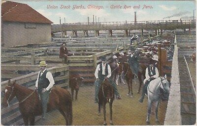 1182 Chicago, Union Stock Yards, Cattle Run and Pens, Illinois