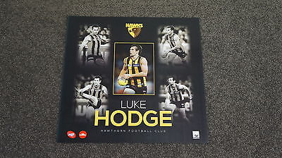 Luke Hodge Hawthorn Hawks Unsigned Official AFL Player Print Unframed NEW