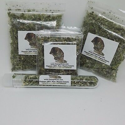 New Dried Extra Strong Catnip Organic Herb For Cats Various Size Nepeta Cataria