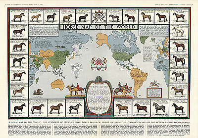 Historic Horse Map of the World Antique Vintage Pictorial Wall Art Poster Decor