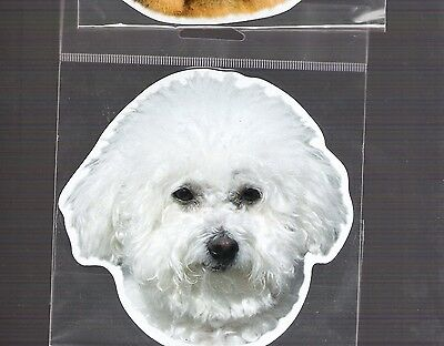Bichon Frise  4 inch face magnet for anything metal