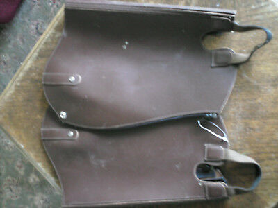 Brown Chaps English Leather