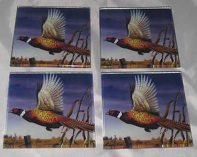 PHEASANTS Coasters Set of 4 Tempered Glass Tuftop Made in USA Hunting Bird New