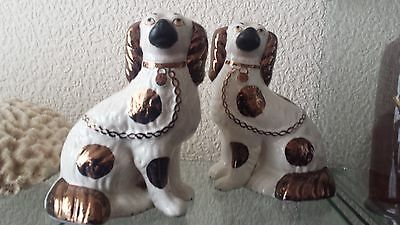 Pair of stunning Victorian Staffordshire Mantel Dogs with unusual White & R Gold