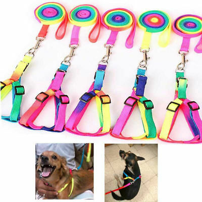 Colourful Dog Pet Cat Adjustable Nylon Harness with Lead leash Traction Rope
