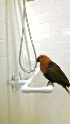 Medium Shower  Bath Perch Stand,Conure, Gray, Amazon Parrots **FREE SHIPPING