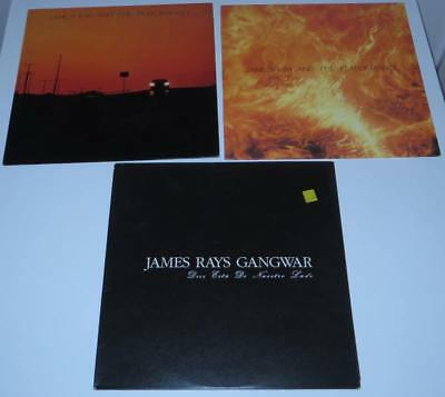 3xVINYL JAMES RAY PERFORMANCE GANGWAR * Wave Merciful Release Sisters Of Mercy