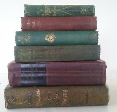 Lot of 6 Antique/Vintage Books, 1869 to 1937