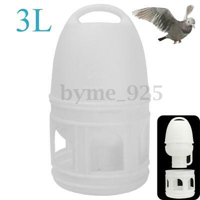 US 3L 3000ML White Removeble Plastic Drinker w/ Handle For Bird Pigeons Supplies