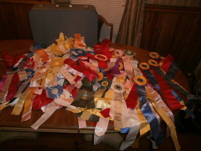 Large Lot of 120 Horse Show Ribbons