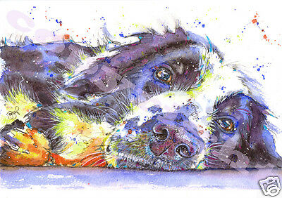 BORDER COLLIE PRINT from Original Watercolour Dog Sheepdog Painting by JOSIE P