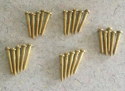 """Lot Of 25 Vintage""""NOS"""" #6x1 Solid Brass Slotted Round Head Wood Screws"""