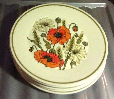 "J&G MEAKIN STUDIO English Ironstone ""POPPY"" 10"" DINNER PLATE (6 Available)"