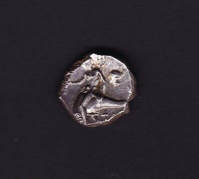 Tarentum, Calabria AR Nomos Silver Greek Coin 272 - 235 BC Roman Occupation Rare