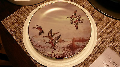 Ducks Taking Flight Collectors Plate Set of 8 David Maass Vintage 1988 MINT DU