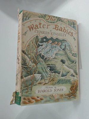 The Water Babies by Charles Kingsley Hardback Book The Cheap Fast Free Post