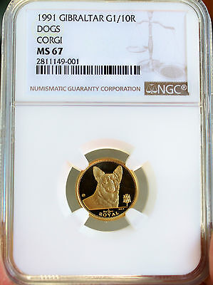 1991 Gold Gibraltar CORGI Dog 1/10 Ounce Coin NGC MS67 Superb Gem Extremely Rare