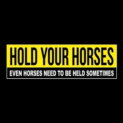 HOLD YOUR HORSES - EVEN HORSES NEED TO BE HELD SOMETIMES Anti Tailgater STICKER