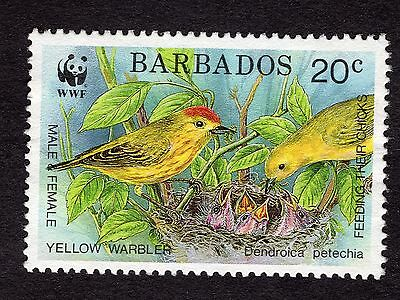 1991 Barbados 20c Yellow Warbler SG949 FINE USED R32605