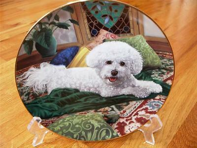 Danbury Mint BICHON FRISE Pampered Princess Limited Edition Plate