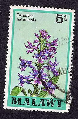 1979 Malawi Orchids Calanthe natalensis 5T SG 579 GOOD Used R30185
