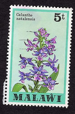 1979 Malawi Orchids Calanthe natalensis 5T SG 579 FINE Used R30184