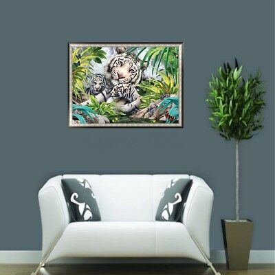 AU Framed 50x40cm Paint By Numbers Kit Canvas White Tiger Kids Art Home Decor