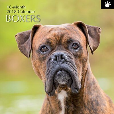 2018 Boxers Calendar by The Gifted  Cute Dog Puppy Puppies Photography