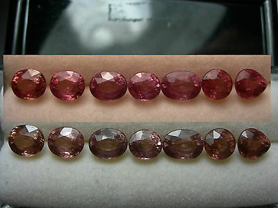 7 rare color shift Malaya Garnet gems Umba Valley Tanzania 5.15cttw parcel