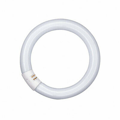 Osram Fluorescent Lamp T9 L Ring-Shaped Lumilux round Pipe Tube Light G10q