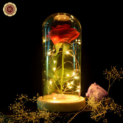 WR Beauty And The Beast Enchanted Red Rose Glass Dome LED Lamp Valentine's Gifts