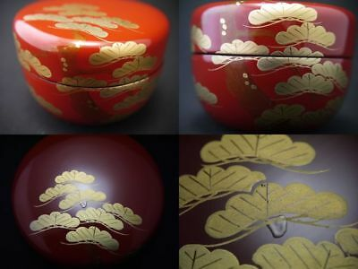 Japanese Traditional Lacquer Wooden Tea Caddy OIMATSU makie Hira-Natsume (1110)