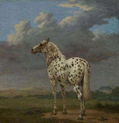 CHENPAT460 rare fine horse animal art hand-painted oil painting on canvas