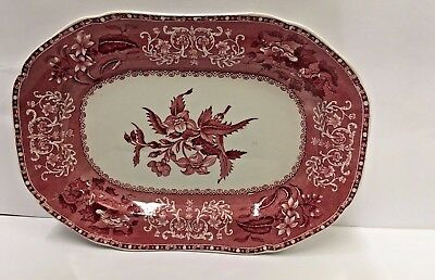 Spode CAMILLA RED (SCALLOPED) 12 3/4'  Oval Serving Platter More Items Available
