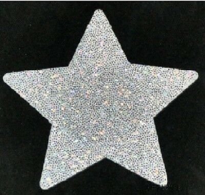 Holographic Silver Glitter Star ~USA Rave Girl~ Waterproof Satin Pasties~2 Sizes