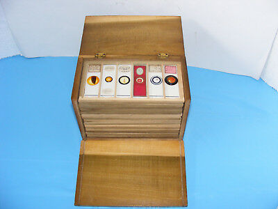 Collection Of Antique/vintage Microscope Slides In Box