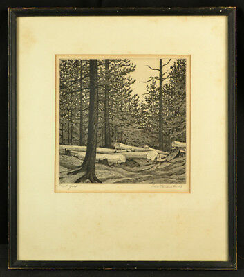 """American Aaa Wpa Etching Trees Pencil Signed Alice Standish Buell """"forest Yield"""""""