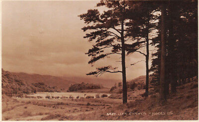 Llyn Cynwch North Wales Uk~Judges #6427 Photo Postcard 1925 Pmk