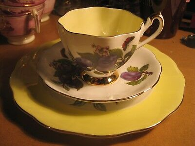 Vintage Queen Anne Bone China England Plum Fruit Yellow Teacup Saucer Plate
