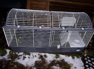 Spacieuse Cage Pour Lapin