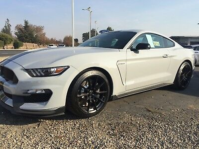 2017 Ford Mustang GT350 2017 Ford Mustang Shelby GT350 2 Dr Fastback 2WD