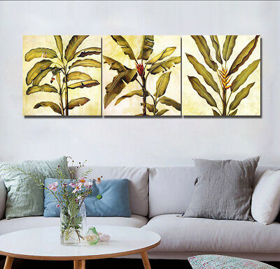 3pc Abstract Banana Trees Leaves Flowers Art Wall Decor Painting Canvas NO frame