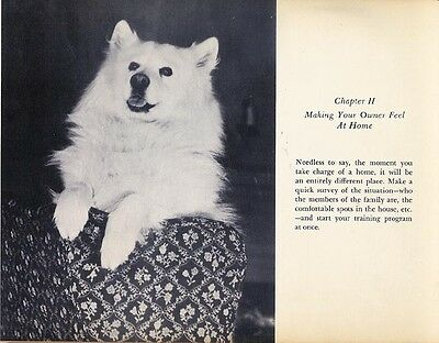 How To Train Your Owner ~,  Vintage Rare Samoyed  Dog Book