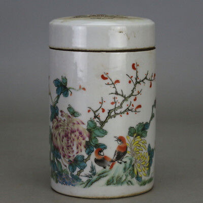 China old hand-carved porcelain famille rose bird & flower pattern tea caddy