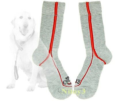 Hot Chillys Classic Hiking Multi-Sport Crew Socks Wicks Moisture Women Medium