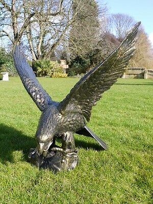 Large Cast Iron Eagle Garden Statue Bronzed Eagle Right Looking, Stunning