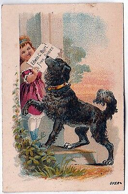 1880 Tradecard D.b.beam Paterson, N.j. With Little Girl & Dog & Calender On Rear