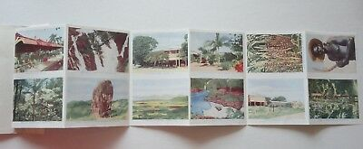 KURANDA NORTH QUEENSLAND, VINTAGE FOLDOUT POSTCARD LETTER CARD Murray views