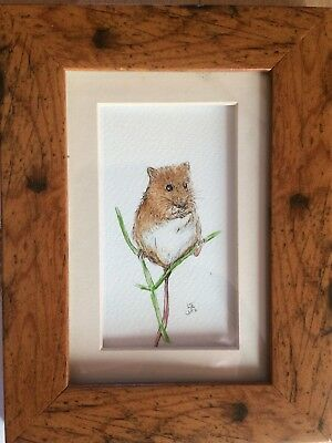 Original Framed Watercolour Painting Wildlife Harvest Mouse By Lisa Evans