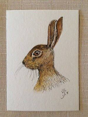 ORIGINAL ACEO WATERCOLOUR Hare - By Lisa EVANS